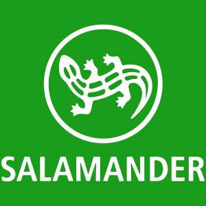 565892a22dba89 Salamander, Обувь, WiaHome.com, коммерческая и элитная недвижимость ...